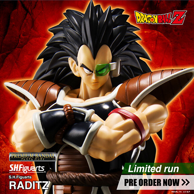 S.H.Figuarts Raditz Dragon Ball.jpg